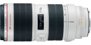 Top 10 Best Canon Lenses in 2020