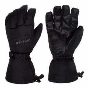 Plizza Ski Gloves