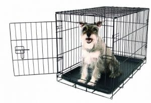 Carlson Pet Products Carlson Compact Single Door Metal Dog Crate