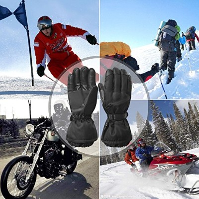 Men's Waterproof Windproof Ski Gloves