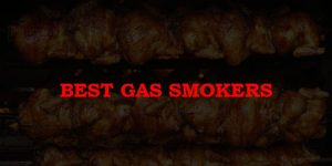 Top 10 Best Gas Smokers in 2019 Reviews