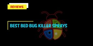 Top 8 Best Bed Bug Killer Sprays in 2020 Reviews