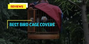 Top 8 Best Bird Cage Covers in 2019 Reviews