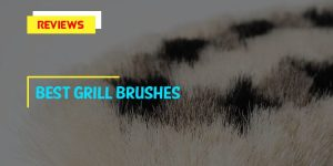 Top 8 Best Grill Brushes in 2018 Tips & Reviews