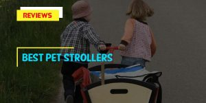 Top 10 Best Pet Strollers in 2019 Reviews