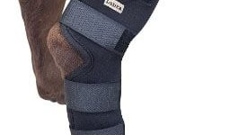Labra Co. Extra Supportive Dog Canine Rear Leg Hock Joint Wrap Protects Wounds