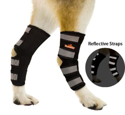 NeoAlly Dog Rear Leg Braces Canine Hind Hock for Injury and Sprain Protection