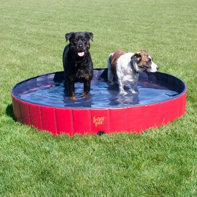 FrontPet Foldable Extra Large Dog Pet Pool Bathing Tub (60 Inch X 12 Inch)