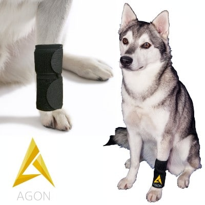 Agon Dog Canine Front Leg Brace Paw Compression Wraps