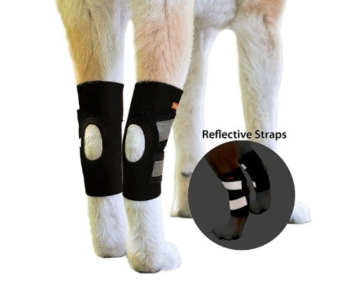 NeoAlly Dog Hind Leg Ankle Braces Canine Rear Hock Joint Sleeves with Safety Reflective Straps