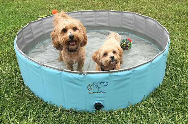 MyHomeZoo Dog Pool – Foldable and Light Weight Above Ground Swimming and Bathing