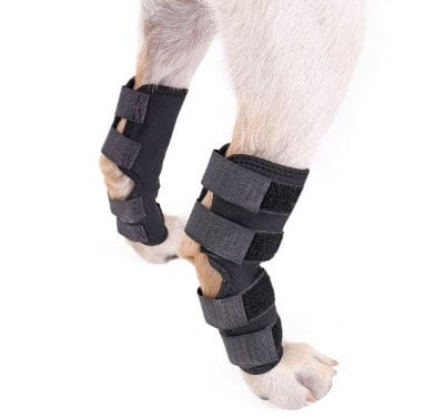 Speedy Pet Dog Back Leg Brace, Dog Canine Rear Leg Hock Joint Wraps Protects Wounds