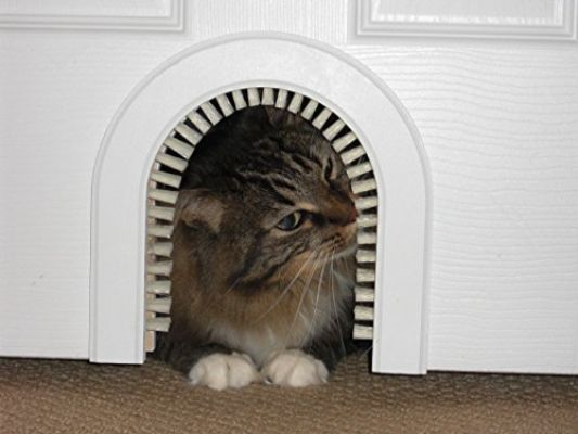 Cat Door - The Original Cathole Interior Pet Door - The Only Cat Door with A Cleaning : Grooming Brush