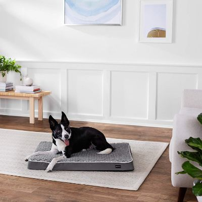 AmazonBasics Ergonomic Foam Pet Bed