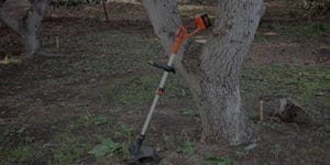 15 Best Tree Trimmers Reviews in 2020
